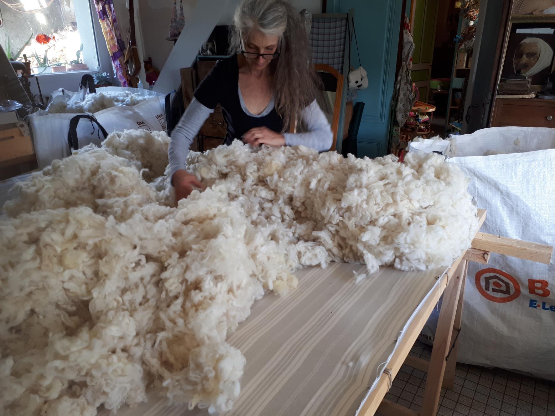 Reve de laine